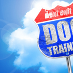 National Train Your Dog Month: What Dog Owners Need to Know