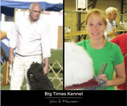 A Caring Kennel Starts with Caring Owners