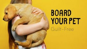 Board Your Pet Girl holding yellow lab