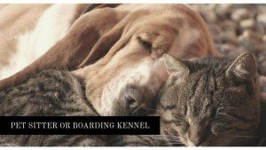 pet sitter or boarding kennel