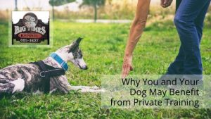 Benefit from Private Training