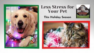 Less Stress for Your Pet - BTK